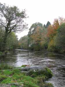 Autumn Colours on The River Dart-1